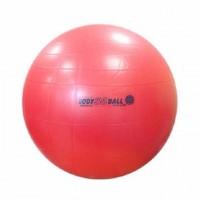 Мяч гимнастический 'Body boll' 55см с BRQ
